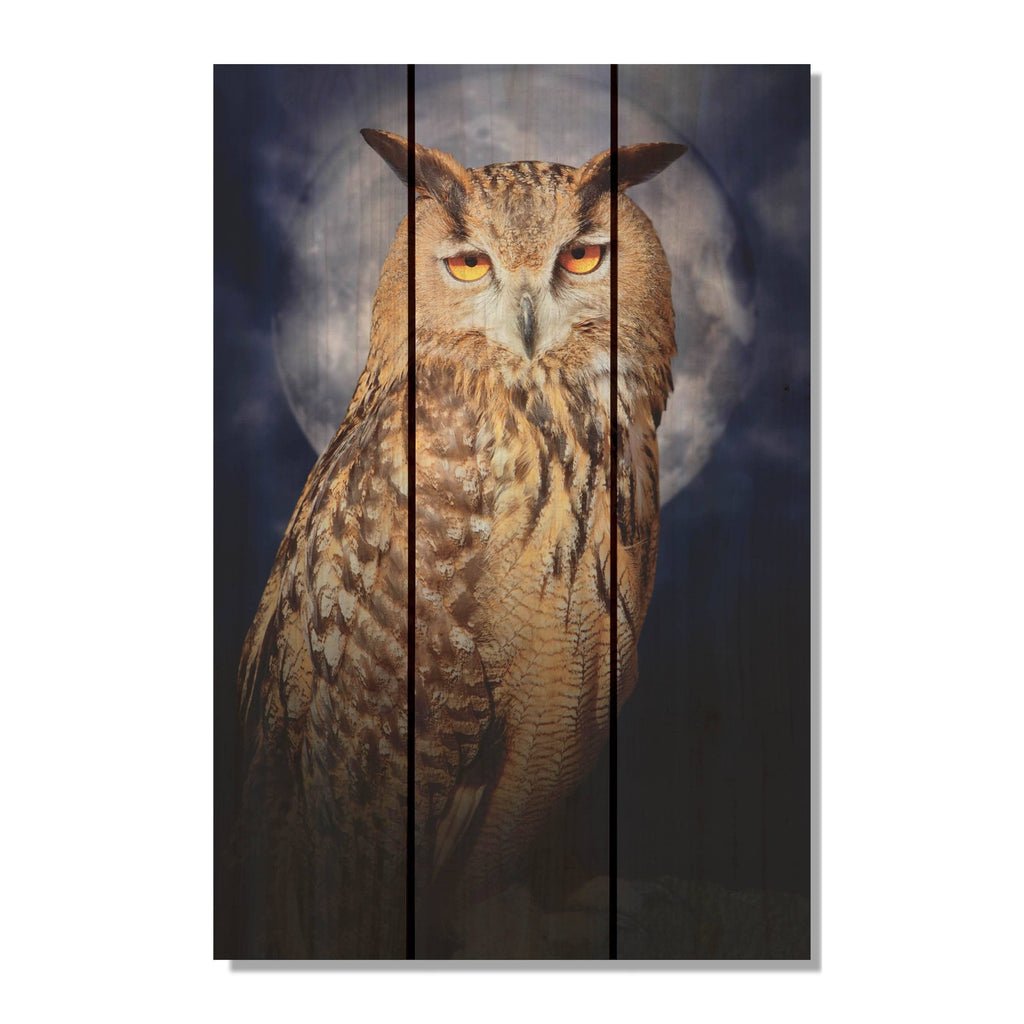 Night Owl - Wood Wall Art DaydreamHQ FenceEscape 16x24