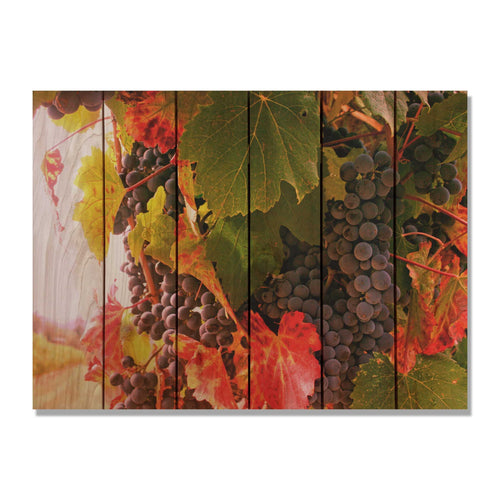 Select Vintage - Wine Wood Wall Art DaydreamHQ FenceEscape 33'x24""