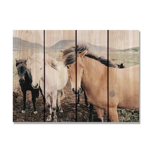 "Three Amigos - Horses Wood Wall Art DaydreamHQ FenceEscape 22""x16"""