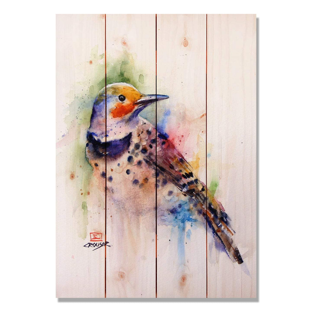Colorful Bird by Dean Crouser - Wood Wall Art DaydreamHQ 14x20
