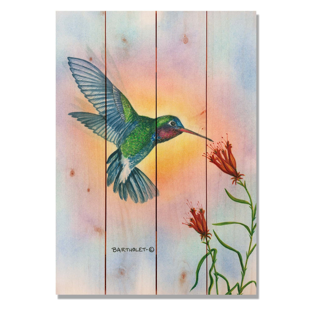 Broadbill by Dave Bartholet - Bird Wood Wall Art DaydreamHQ 14x20