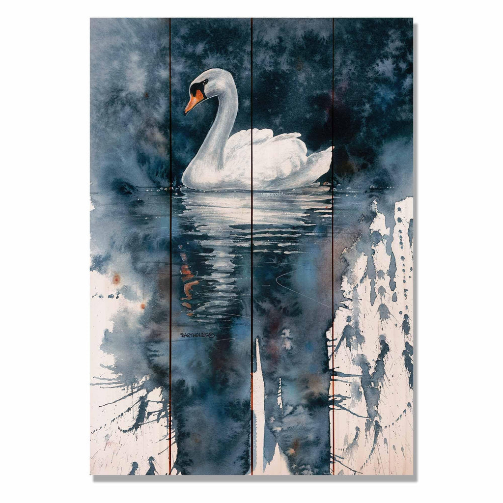 "Amazing Grace by Dave Bartholet - Swan Wood Wall Art DaydreamHQ 14""x20"""