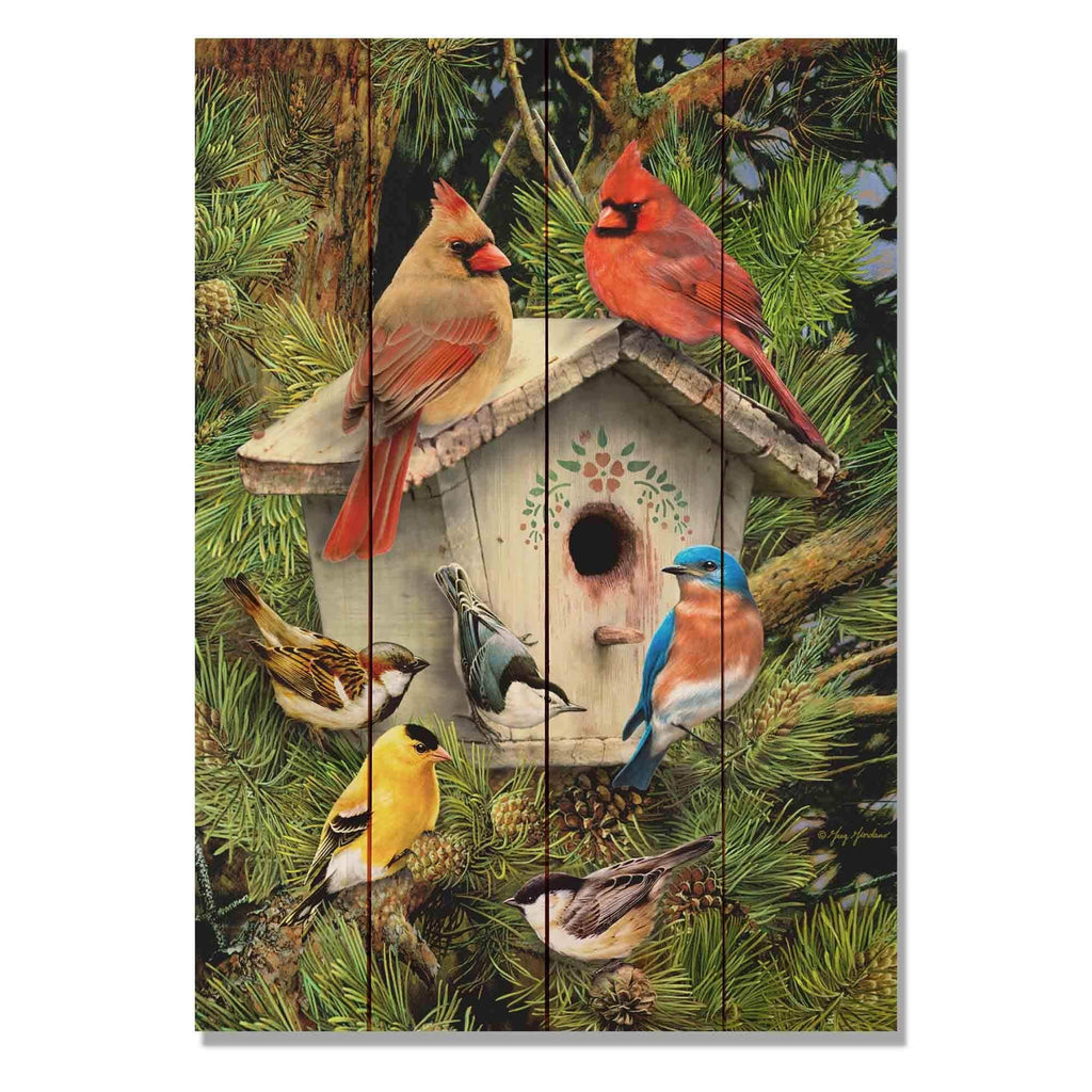 Giordano's Bird House, Bird Print on Wood, Colorful Bird Art, Outdoor Safe Wall Hanging Decor. (GGBH) DaydreamHQ