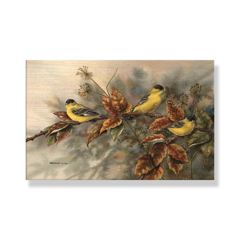 Bartholet's Birds Of A Feather - Solid Wood Postcards - Pack of 5