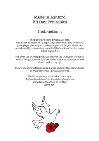 ve day activity pack instructions