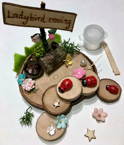 Ladybird diy tiny fairy garden kit