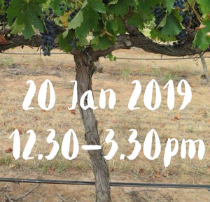 Paint and Plonk at Peter Lehmann Wines 20 January 2019