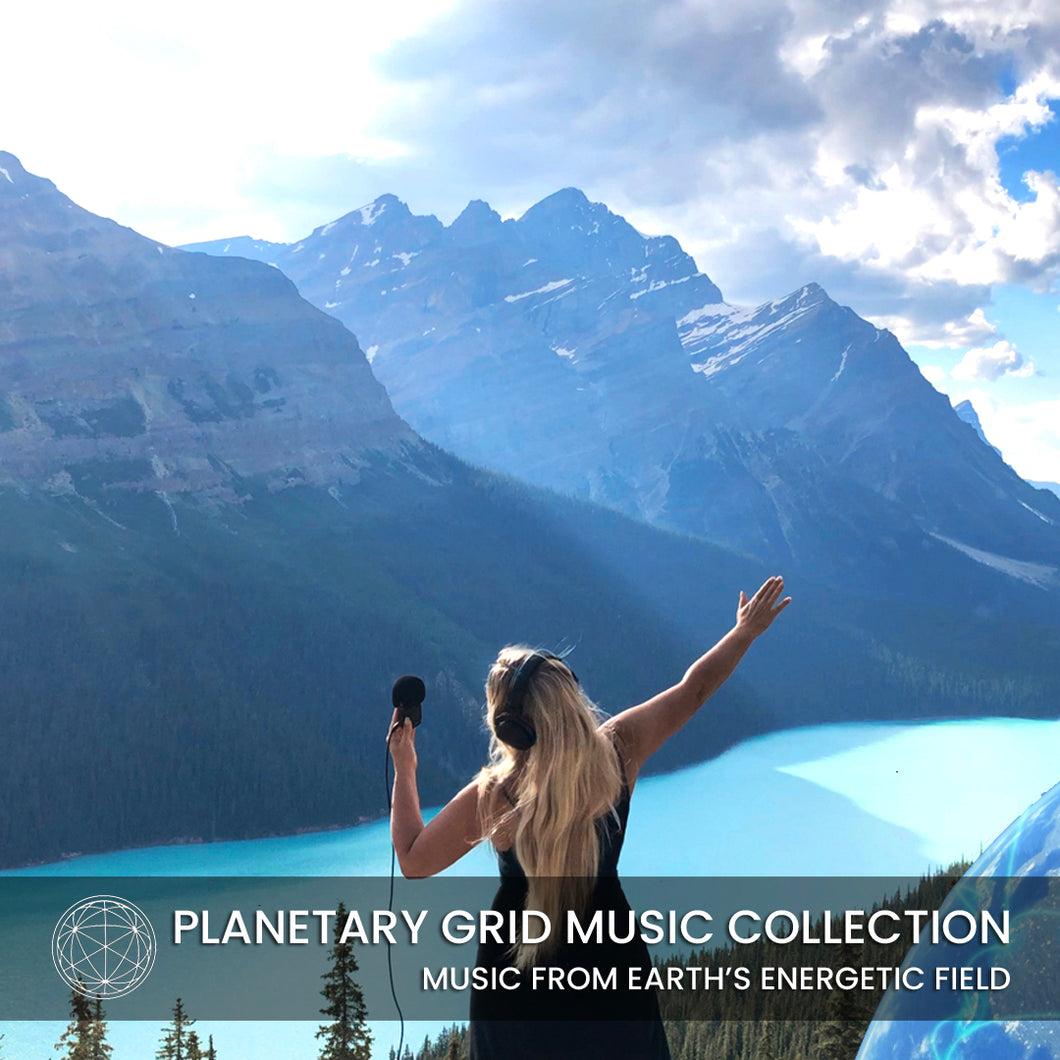 Planetary Grid Music Collection 12 Albums - Deya Dova