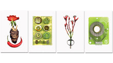 Load image into Gallery viewer, Limited Edition Postcards - Set Of 4 - Deya Dova