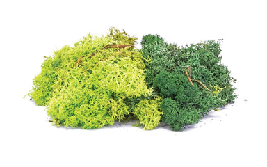 Hornby R7194 Lichen - Green Mix 35G