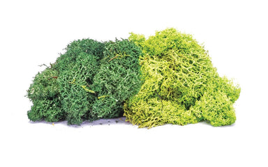 Hornby R7195 Lichen - Large Green Mix 75G