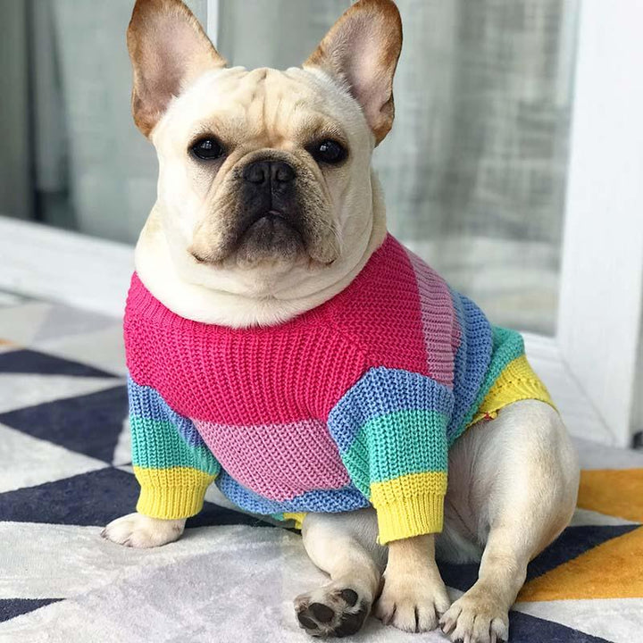 dog and cat Merle Sweater - momo-blvd