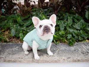dog Gracie Coat - momo-blvd