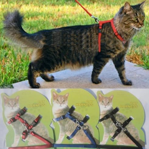 Adjustable Cat Harness And Leash - Adjustable Cat Harness And Leash