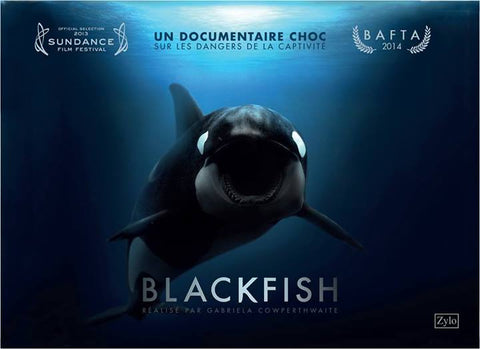 Blackfish documentaire animalier