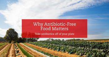Why Antibiotic-Free Food Matters
