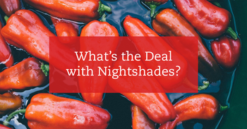 What's the Deal with Nightshades?
