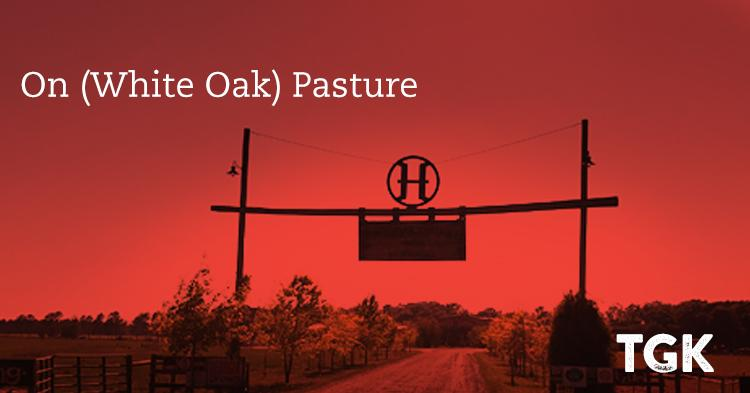 On (White Oak) Pasture