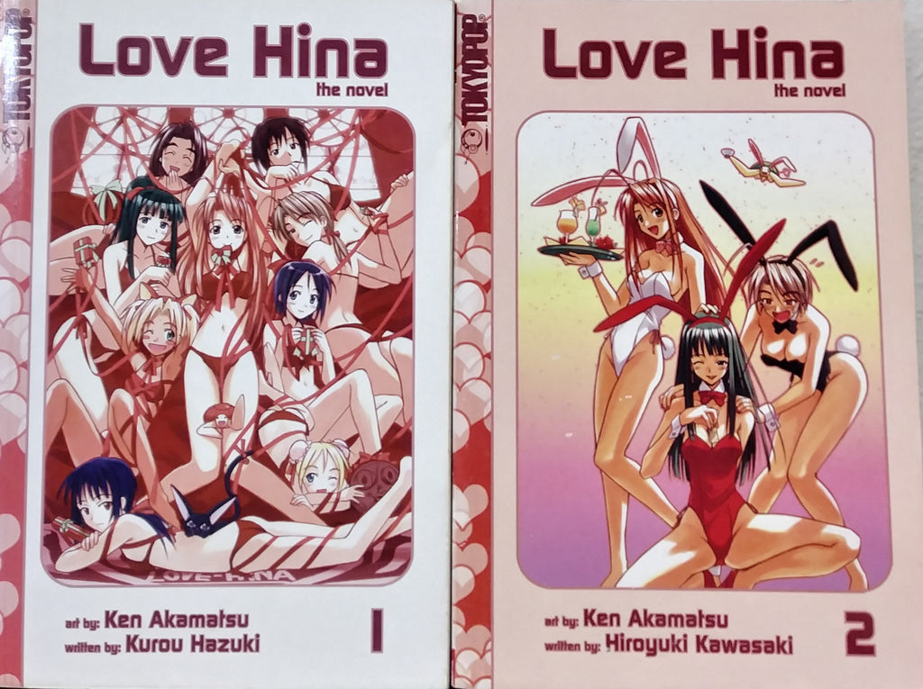Love Hina Novels?