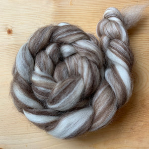 hand-dyed mixed color blue faced leicester