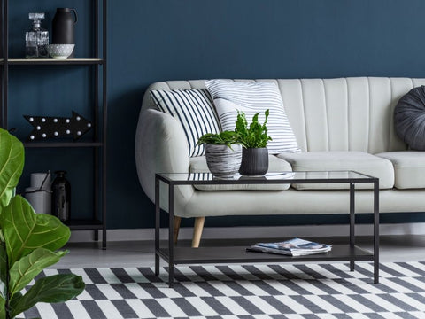 checkered rug with beige sofa, green plants and navy painted walls