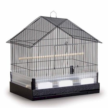 birds, Parrots, Budgerigar, Cockatiel, Finches, Domestic canary, Cockatoos, Lovebird, Grey parrot, Poinus, Amazon parrot, Green-cheeked Parakeet, House Style, Prevue Pet