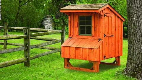 Amish Quaker Style 4' x 4' Chicken Coop For 8 to 10 chickens