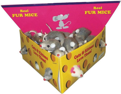 Image of Furry Mice