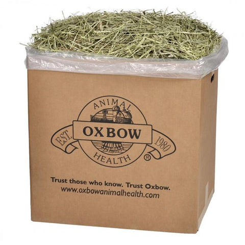Image of Ox Bow Western Timothy Hay