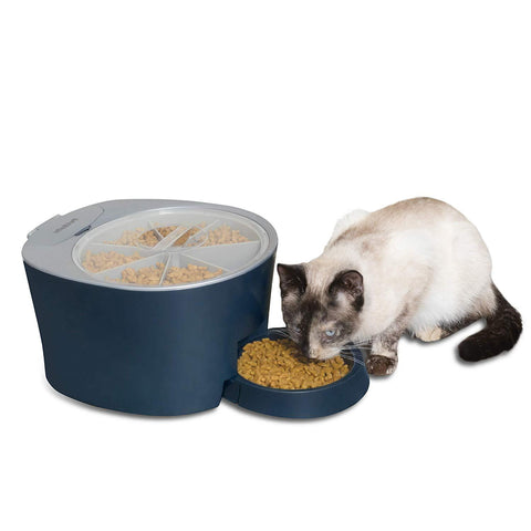 PetSafe Automatic 6 Meal Pet Feeder Cat and Dog Food Dispenser Great for Cats and Small Dogs