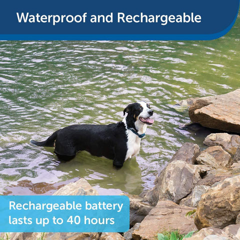 PetSafe Remote Trainer Waterproof Rechargeable Tone Vibration 15 Levels of Static Stimulation Dogs Over 8 lb