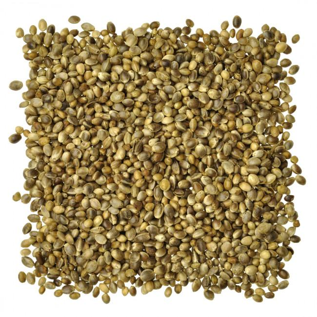 Wingz Avian Products Bulk Hemp Seed