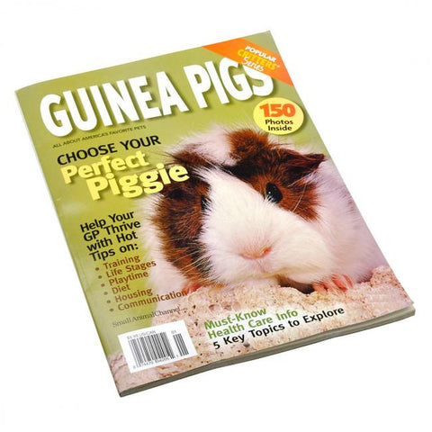 Guinea Pigs | Popular Critter Magazine