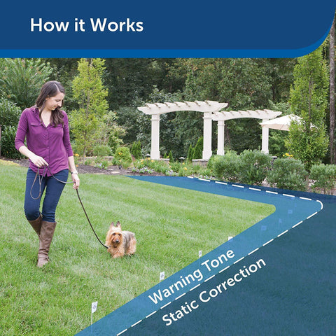 PetSafe Basic In Ground Dog and Cat Fence from the Parent Company of INVISIBLE FENCE Brand Underground Electric Pet Fence