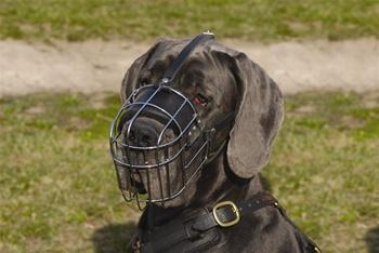 Image of Basket Muzzle With Leather Straps (30 Sizes Available)