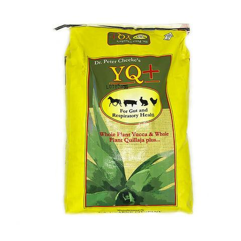Dr. Peter Cheeke's YQ+ Supplement