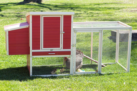 New Age Farm™ Sonoma Chicken Coop