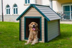 New Age Pet® Bunkhouse Dog House