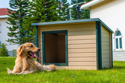 New Age Pet® Rustic Lodge Dog House With Green Trim
