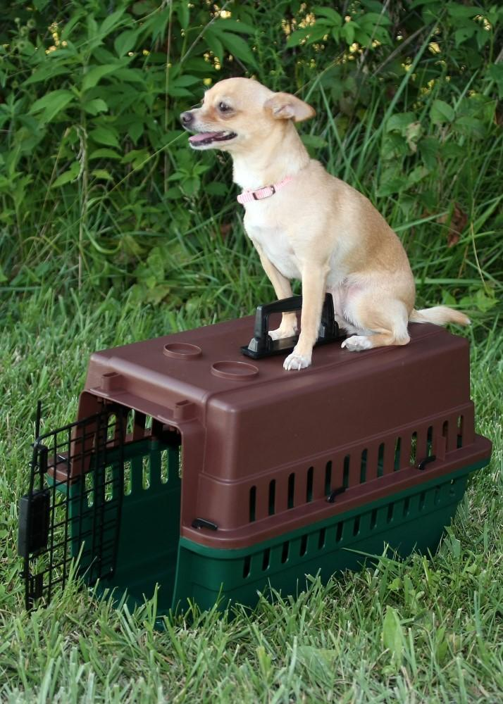 Grain Valley Sportmans GV Portable Kennel - SC Small