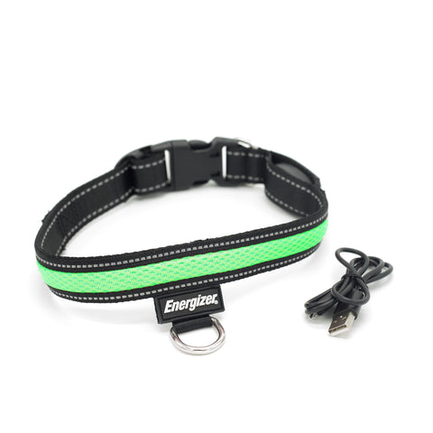 Energizer Ignite Series LED Dog Collar