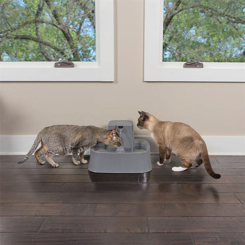 Image of PetSafe Drinkwell 2 Gallon Pet Fountain