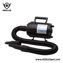 Aeolus Cyclone Super Single Motor Dryer