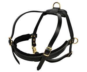 """The Cowboy"" Leather Harness For Small To Extra Large Dogs"