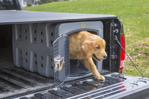 Image of DAKOTA283 T1 KENNEL