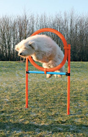 Image of Trixie Agility Ring for Dogs