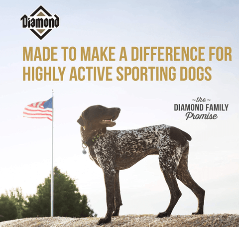Diamond Premium Recipe Hi-Energy Complete And Balanced Dry Dog Food For Sport Dogs, 50Lb