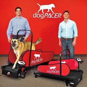 dogPACER LF 3.1 Folding Dog Treadmill For Medium/ Large Dogs