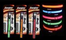 Energizer Ignite Series LED Light Up Dog Collar- USB Rechargable