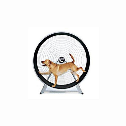 GoPet Indoor Exercise Treadwheel For Large Dogs And Cats <150lbs
